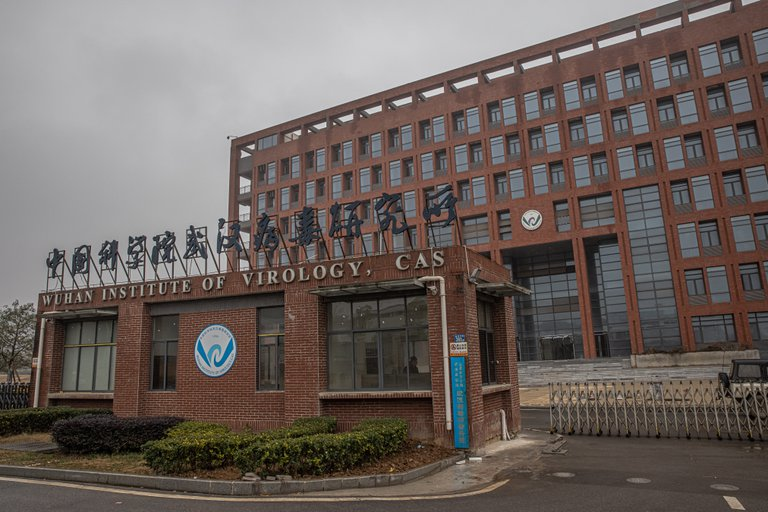 The Wuhan laboratory